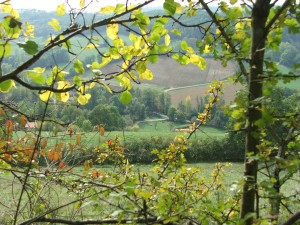 Uitzicht vanaf  Mas d'Astruc